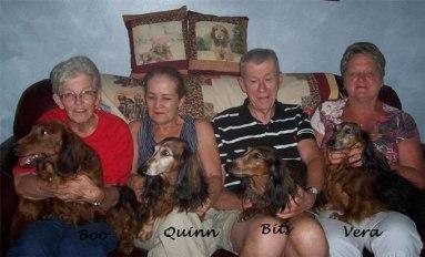 Emily's dogs, Mesothelioma Survivor