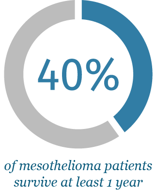 Pie chart representing mesothelioma survival rate