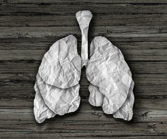 Paper mache lungs