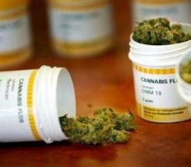 Medical marijuana in a prescription pill bottle