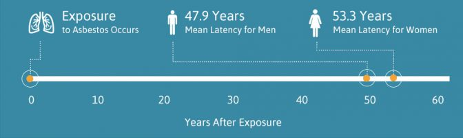 Timeline displaying mesothelioma latency period for men and women following asbestos exposure.