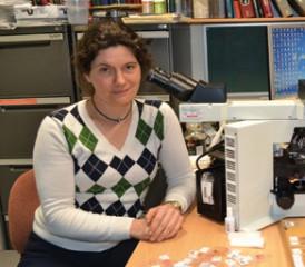 Associate Professor, Sonja Klebe