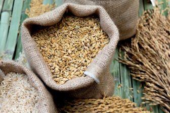Burlap bags with whole grain