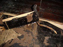 Asbestos Adhesive Floors