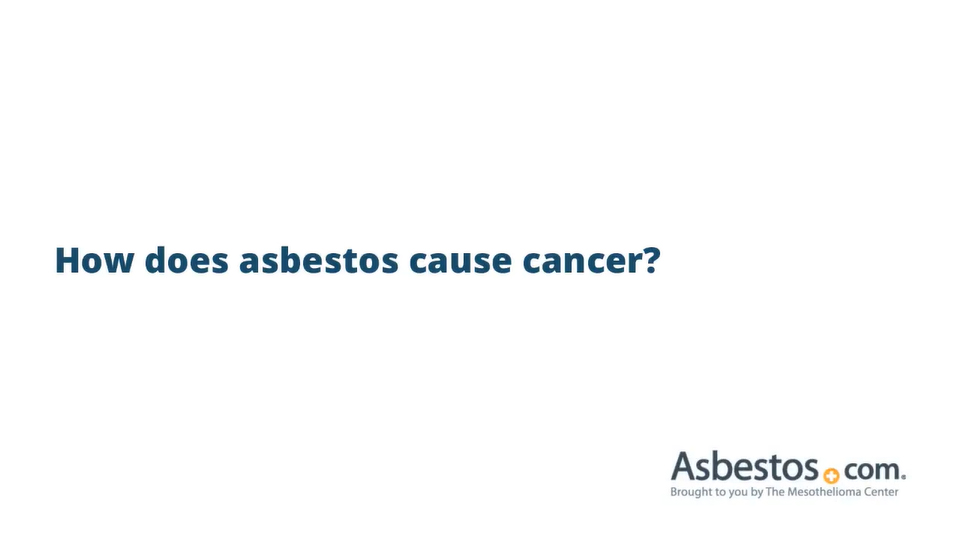 Asbestos Cancer Mesothelioma Lung Cancer Other Cancers