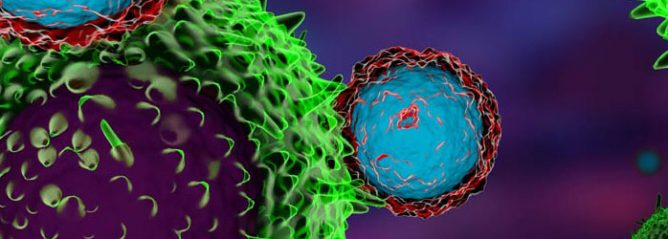 Immunotherapy targeting cancer cells