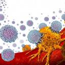 White blood cells orange tumors illustration