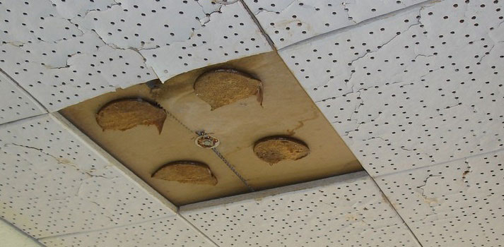 Ceiling tile made with asbestos in a school