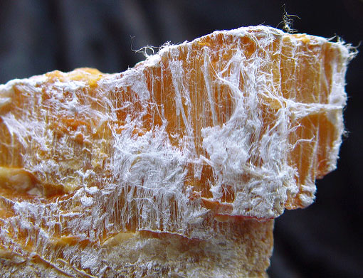 Asbestos Blocked For 6th Time From Hazardous Substances List