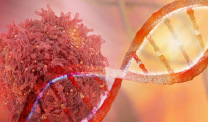 DNA strand and cancer cell