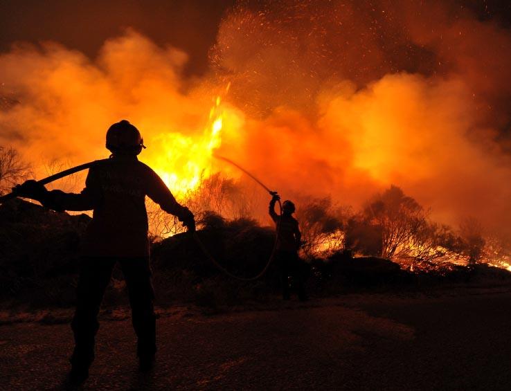 Firefighters extinguishing brush fire