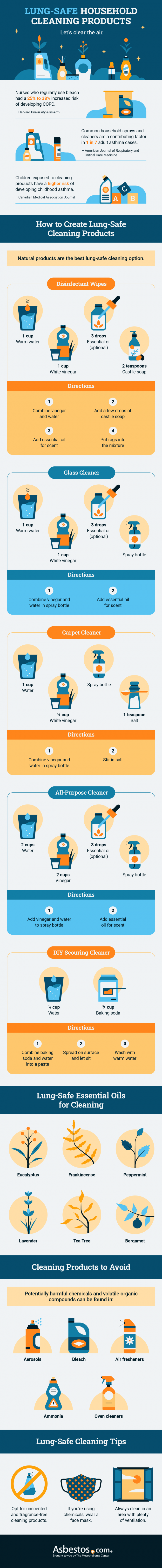 Guide to Lung-Safe Household Products Infographic