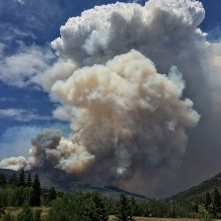 Libby forest fire
