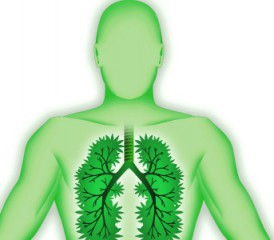 Green illustration of man's lungs