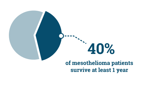 Percentage of mesothelioma patients who survive at least one year
