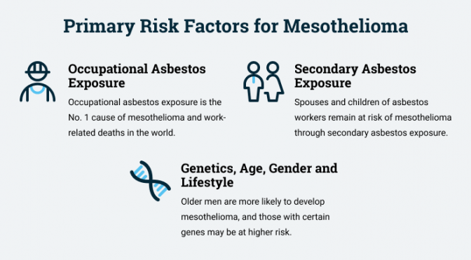 Primary risk factors for mesothelioma cancer