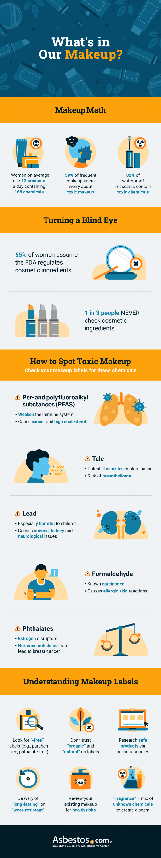 What is in makeup infographic