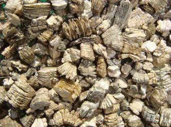 Chunks of vermiculite asbestos