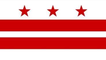 Washington D.C. State Flag