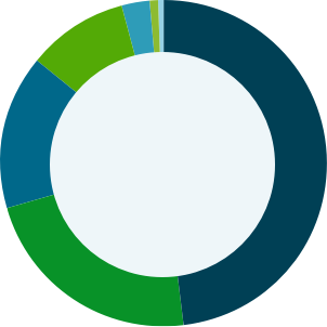 Women and Mesothelioma Pie Graph