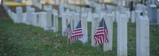 Graves in a veteran's cemetery with American flags