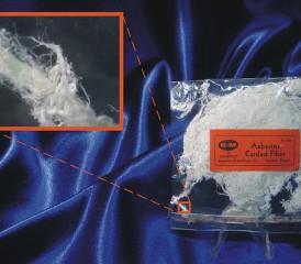 Asbestos carded fiber