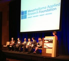 Panel at Meso Foundation Symposium
