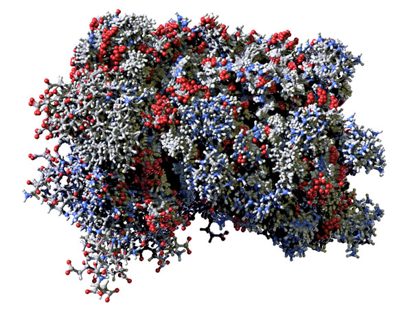 Red, blue and gray model of a human interferon molecule