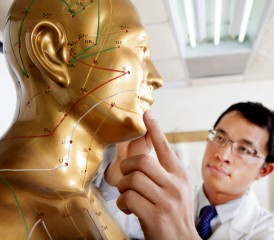 Doctor with acupuncture model