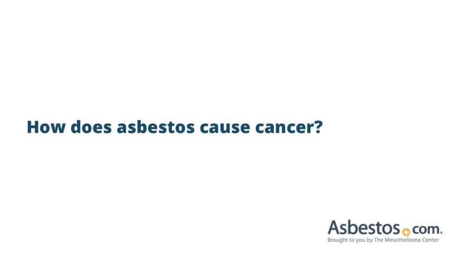 Video on Asbestos-Related Cancers