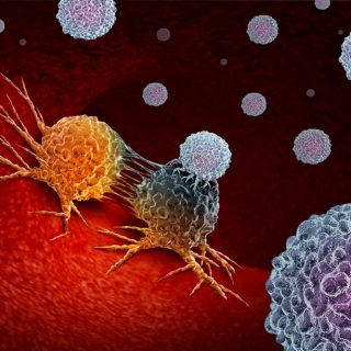 Immunotherapy attacking cancer cells