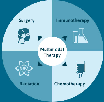 Multimodal Therapy Diagram