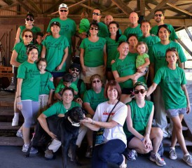 Irish Stampede group shot