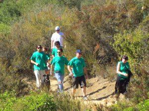 Irish Stampede walking on trail
