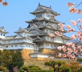 Japanese palace with cherry blossoms