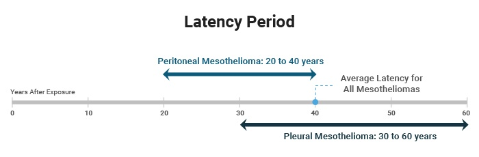 Latency Period of Mesothelioma: How Long the Cancer Takes to
