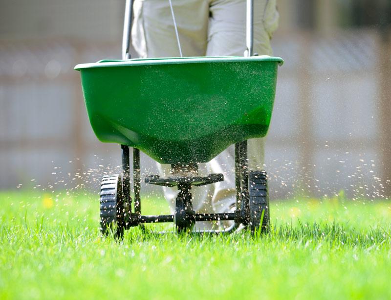 lawn-fertilizer