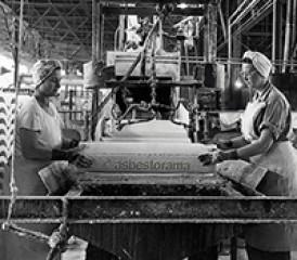 Asbestos factory workers