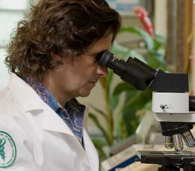 Dr. Michele Carbone with microscope