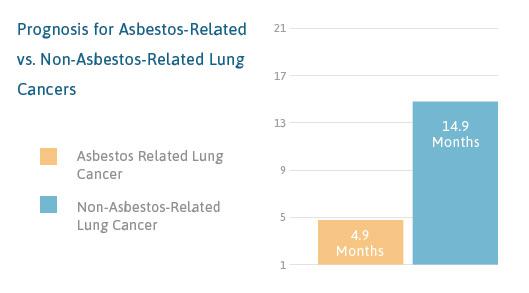 Asbestos Lung Cancer Prognosis Life Expectancy - Imagez co