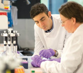 Scientist with purple gloves in a lab