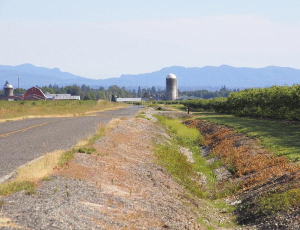 Sumas Mountain region in Washington