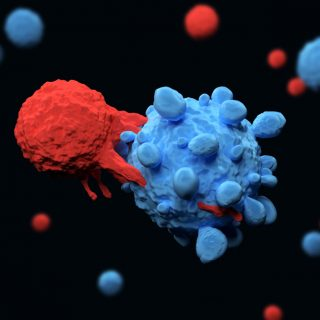 T cell attacking cancer cell