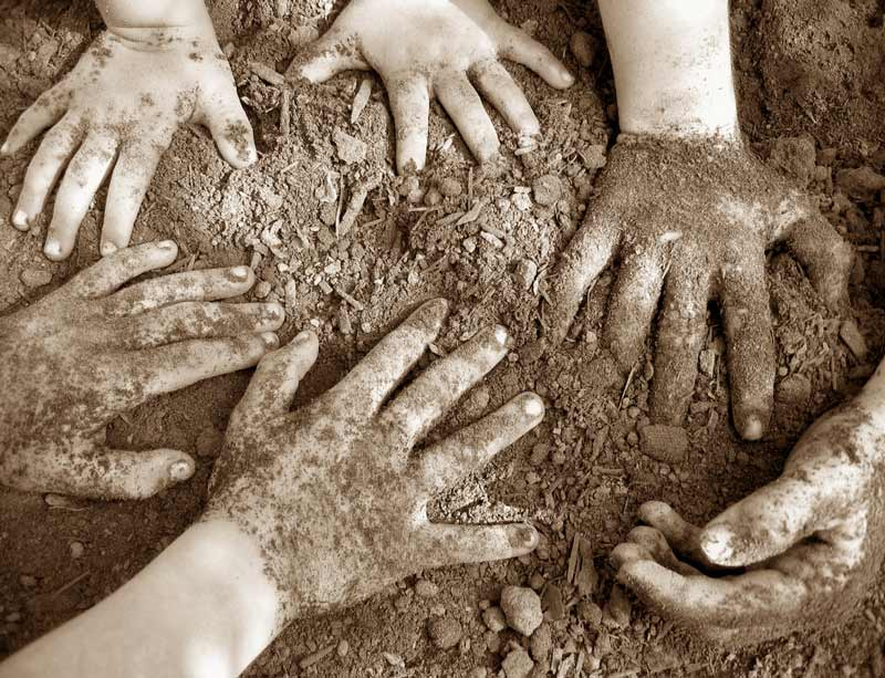 Young hands in dirt
